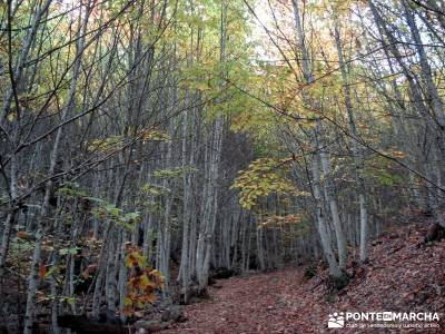 Las Médulas - Valle del Silencio - Herrería de Compludo;actividades senderismo senderos del jerte